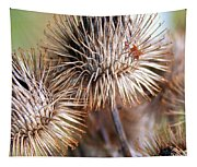 Thistle Seedheads Tapestry