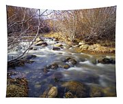 Thomas Creek Tapestry