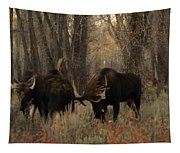 Three Bull Moose Sparring Tapestry