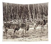 Three In The Field Tapestry