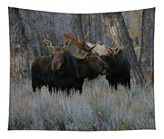 Three Moose In The Woods Tapestry
