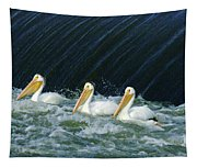 Three Pelicans Hanging Out  Tapestry