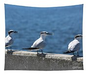 Three Turning Terns Tapestry