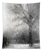 Through Glass -- A Tree In Winter Tapestry