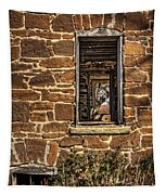 Through Doors And Windows - Abandoned House Tapestry