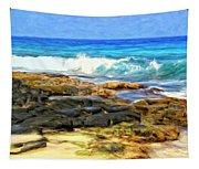 Tide Pools At Magic Sands Tapestry