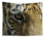 Tiger Eyes Tapestry