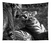 Tigers Kissing Tapestry