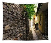 Tight Alley In Stone Tapestry