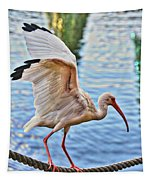 Tightrope Walking Ibis Tapestry