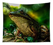 Time Spent With The Frog Tapestry