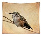 Tiny Hummingbird Resting Tapestry