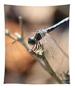 Tired Dragonfly Square Tapestry