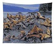 Tk0440, Thomas Kitchin Steller Sea Tapestry