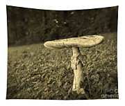 Toadstool Tapestry