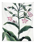 Tobacco Nicotiana Tabacum Tapestry