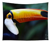 Toco Toucan Brazil Tapestry