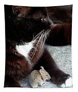 Tom And Jerry Tapestry