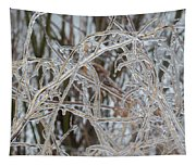 Toronto Ice Storm 2013 - Pale Frozen Grasses  Tapestry