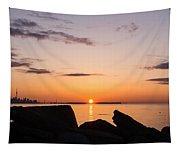 Toronto Skyline Panorama At Sunrise Tapestry