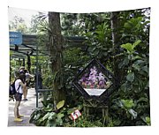 Tourist Doing Photography And Viewing Plants In A Garden Tapestry