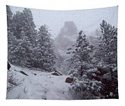 Towards Top Of Bear Peak Mountain During Intense Snow Storm - North Side Tapestry