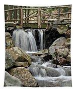 Trail Bridge Tapestry