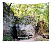 Trail Through The Rocks Wildcat Den State Park Tapestry