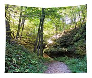 Trail To Devil's Punch Bowl Wildcat Den Tapestry