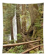 Trail To Waterfall Tapestry