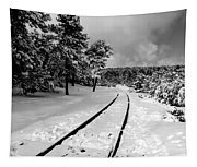 Train Tracks In The Snow Tapestry