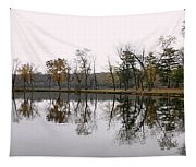 Tranquil Reflections Tapestry