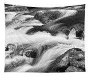 Tranquility In Black And White Tapestry