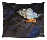 Traveling At A Snail's Pace Tapestry