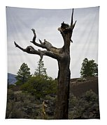 Tree At Lava Trail Tapestry