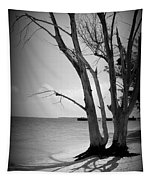 Tree By The Sea Tapestry