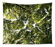 Tree Canopy Tapestry