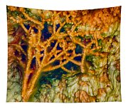 Tree In A Park Hot Springs Tapestry