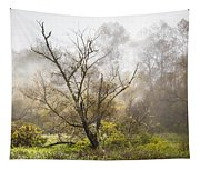 Tree In The Fog Tapestry