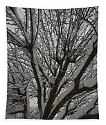 Tree Limb 4 Tapestry