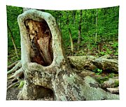 Tree Mouth Tapestry