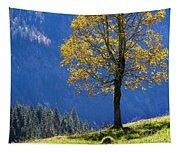 Tree Of Seasons Tapestry