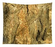 Tree Self Reflections In Bark Tapestry
