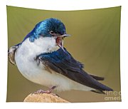 Tree Swallow Squawking Tapestry