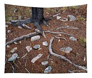 Tree Trunk Roots And Rocks Tapestry