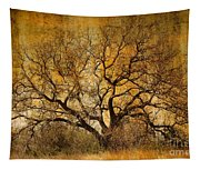 Tree Without Shade Tapestry