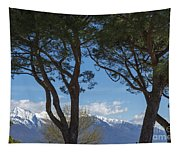 Trees And Snow-capped Mountain Tapestry