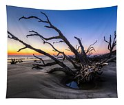 Trees At Driftwood Beach Tapestry