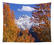 Trees In Autumn, Colorado, Usa Tapestry