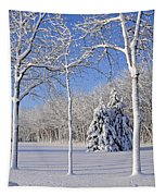 Trees In Snow  Wisconsin Tapestry